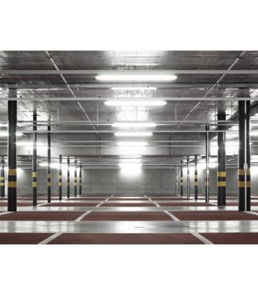 LEDMED BULB LED světelný zdroj 230V E27 - studená bílá | 3W